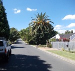 Our hosts home road in Stellenbosch.