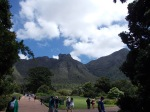 Table Mountain from the Botanic Gardens.